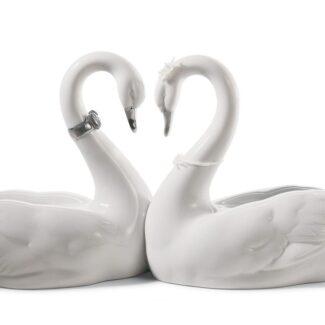 Endless Love Swans